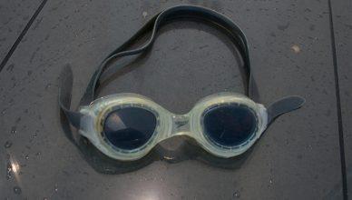 schwimmbrille-spedo
